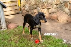 captain_2