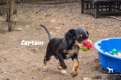 captain_3