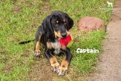 captain_4