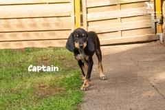 captain_5