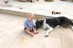elmo_3