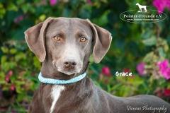 Grace IMG_0371-960