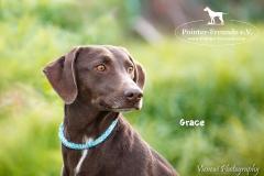 Grace IMG_0410-960