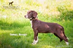 James Brown IMG_2844-960
