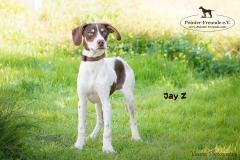 Jay Z IMG_3080-960