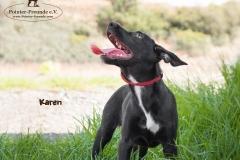 Karen IMG_0212-960