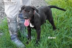 Karen IMG_0234-960