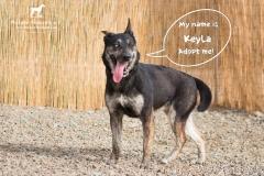 Keyla IMG_1030-960