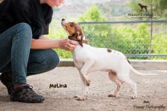 Melina IMG_0195-960