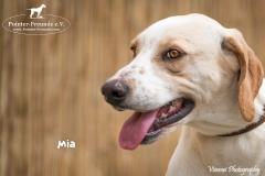 Mia IMG_0068-960