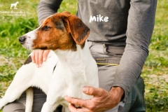 mike_1