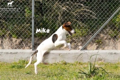 mike_2