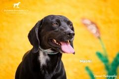 Naomi IMG_0555-960