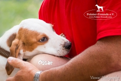 Oscar IMG_0306-960