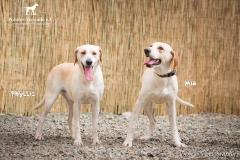 Phyllis and Mia IMG_0113-960