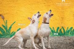 Phyllis and Mia IMG_0141-960