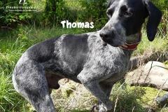 thomas_2