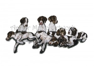 Liver Pointer Pups watermarked